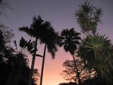 Villa Lapas dawn