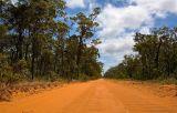 Tropical savannah landscape