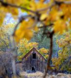 Butch's Barn
