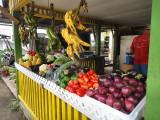 1market stand.jpg