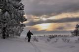 Afternoon Ski