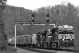 NS 174 at Southfork