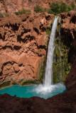 Arizona 2008-09