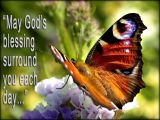 'May God's blessing…' slide from the Knightshayes butterfly series