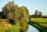 Stream and bridge at Muchelney, Somerset