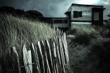 Port blanc - La cabane des Dunes