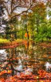couleur-d'automne-2web.jpg
