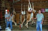 Antelope Hunt 1998