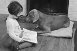 Reading to Gromit