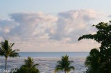 From Cairns to the Daintree