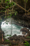 Blowholes in the coral cliffs