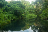 Deep within the mangrove-lined waterways