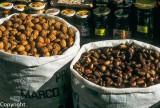 Local nuts and honey for sale in La Alberca, Sierra de Gata (Las Hurdes)