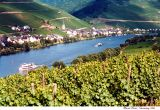 mosel view