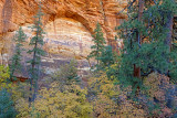 Arch in Zion National Park, UT