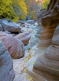 Clear Creek wash, Zion National Park, UT