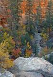 Clear Creek Overlook, Zion National Park, UT