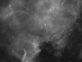 North America Nebula in Hydrogen Alpha