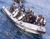 Diving the Socorro Islands