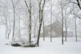 12-25-2012 - A White Christmas!ds20121225-0048w.jpg
