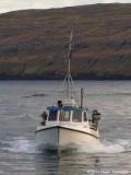 Viðarnes TN 358