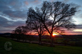 Sunset in the Culm Valley