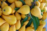 Egg Fruit or Canistel