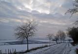 la plaine d'Alsace en hiver