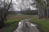 a muddy way