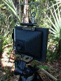 Harman Titan Pinhole Camera 4x5 - at play