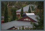 Roof-tops