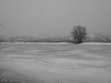 La Beauce in black and white