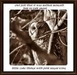 Rather beneath Owl