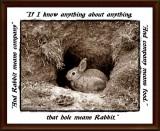 That hole means Rabbit...