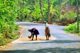 Road as Their Own Backyard