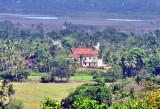 Faith Hidden in the Tropical Forest