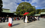 Wedding Procession on Imperial Shrine