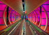 Time Tunnel Walkway