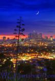 Los Angeles Moonlight