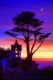 Westport Cypress