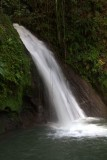 24.  Falls in the botanical gardens at Guadaloupe.