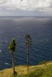 33.  Antigua, the English Harbor area.
