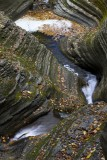 5.  In the gorge