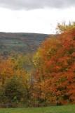 12.  In the Finger Lakes area.