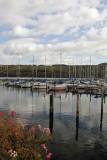 19.  The Watkins Glen marina.