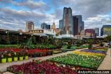 Downtown Dallas, Texas