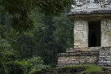 Temple entrance, Palenque