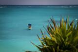 Colorful Caribbean Sea
