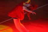 DANCE LANDSCAPE 2011