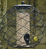 A Starling Proof Bird Feeder?
